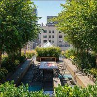 Сад на крыше, живые крыши пентхаусов и квартир с открытыми террасами
