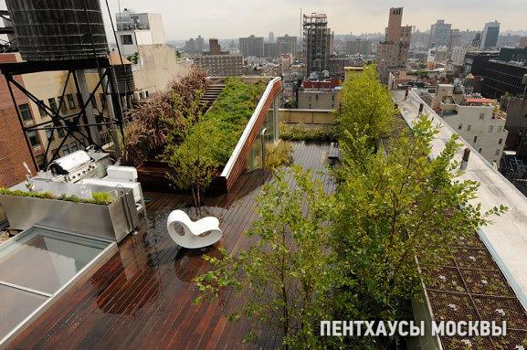 Сад на террасе пентхауса: зачем и как?