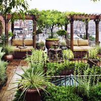 Сады на крышах Нью-Йорка: 8 фильмов об оформлении террас